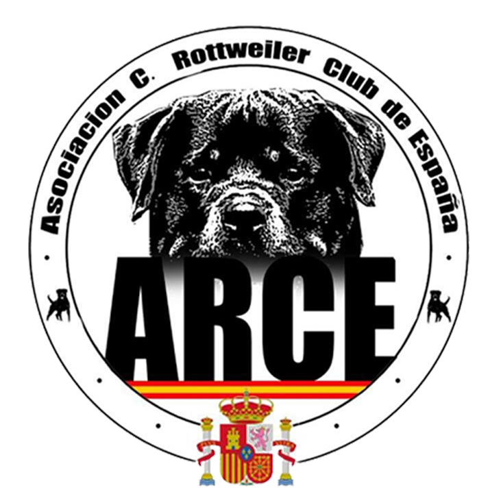 A.R.C.E